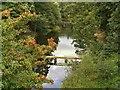SE4017 : Druid's Bridge, Nostell Park by David Dixon