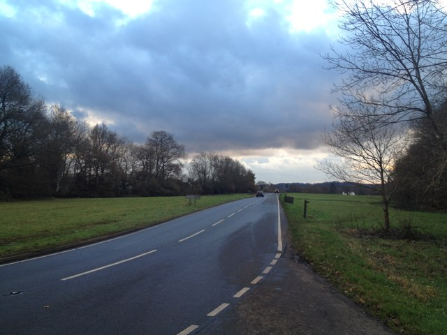 Ockley Road, Forest Green