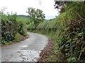 SO3307 : The road to Llanfair Kilgeddin by Christine Johnstone