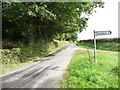 SO3206 : The road to Croes Llanvair by Christine Johnstone