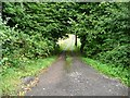 SO3305 : Steep access track, north of the Nant-y-derry road by Christine Johnstone