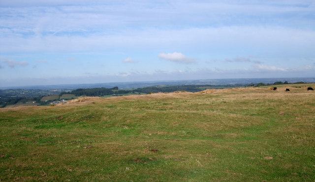 Mound on top of Pilsdon Pen