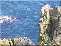 NW9954 : Portpatrick Dumfries & Galloway by DAVE SANDS