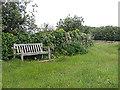 SV9109 : Harold Wilson Memorial Seat on Peninnis by John Rostron