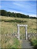 NN9901 : Carved gateway, Seamab Hill by Richard Webb