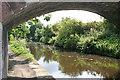NS9577 : Underneath Kirk Bridge by Anne Burgess