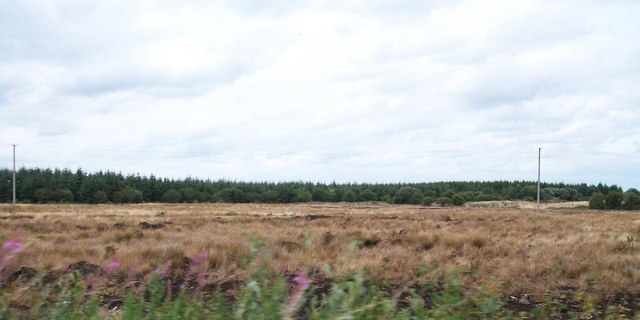 Raised bog and forest land north of the R357