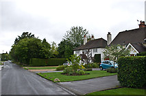 TQ1463 : Arbrook Lane by Ian Capper