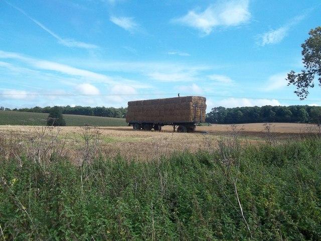 Trailer of Straw Bales near Norbury