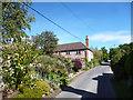 SU7789 : Shogmoor Lane, Skirmett by Des Blenkinsopp
