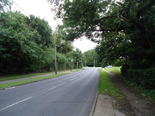Hyde Drive, Ifield
