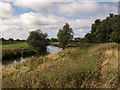 TL4871 : River Great Ouse by Chear Fen by Kim Fyson