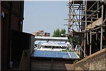 TQ2905 : County Cricket Ground by N Chadwick