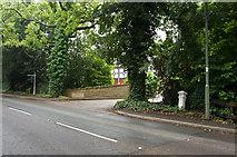 TQ1462 : Copsem Lane by Ian Capper