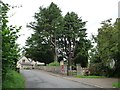 ST3398 : Large trees in the churchyard, Coed-y-paen by Christine Johnstone