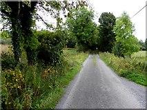 H1410 : Lane, Aghatawny Lower by Kenneth  Allen