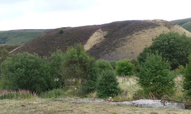 Disused tip between Coity Farm and Big Pit