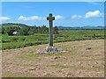 C5247 : St Buadan's Cross, Clonca by Oliver Dixon