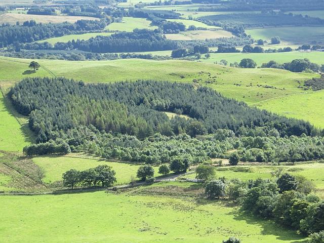 Lawhill Community Woodland