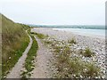 C3950 : Path above the beach at Pollan Bay by Oliver Dixon