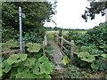 SO1367 : Wooden footbridge over Maes Brook near Dolau by Jaggery