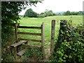 ST2997 : Footpath stile near Tir-brychiad by Christine Johnstone
