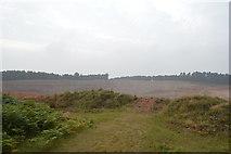 SJ9715 : Extension to Pottal Pool Quarry by John M