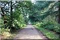 SJ5367 : Path to Primrosehill Wood by Jeff Buck