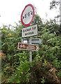 ST6822 : Roadsign, Cabbage Lane by Derek Harper
