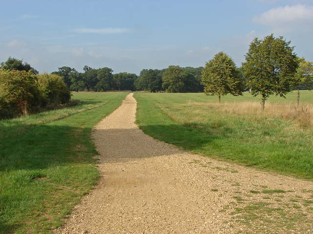 Cycle track, Windsor Great Park
