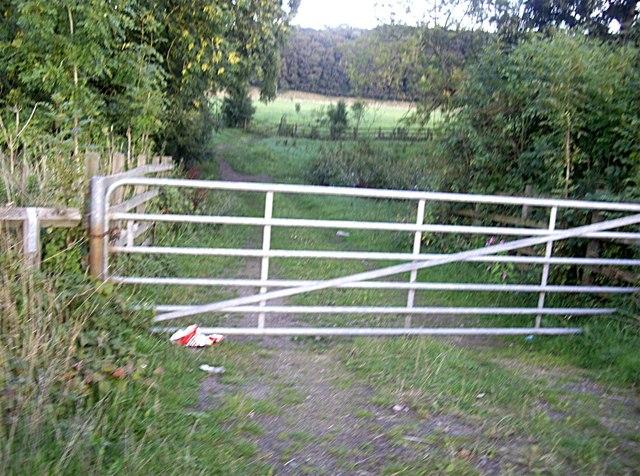 Field access gate