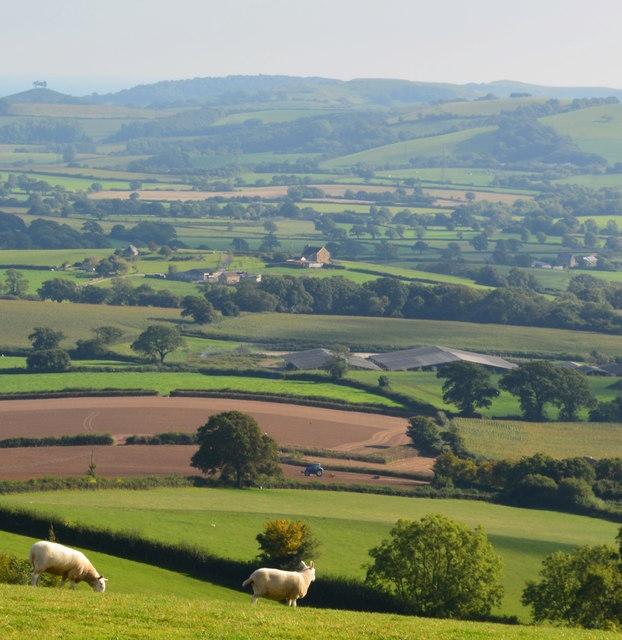 The Vale of Marshwood, Pilsdon, Dorset