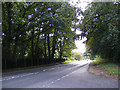 TG2022 : A140 Cromer Road, Hevingham by Adrian Cable
