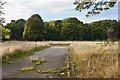 SJ4488 : Derelict land shields Childwall Golf Course from view by Ian Greig
