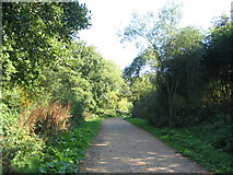 SP2975 : Cycle route between Cryfield House and Crackley by E Gammie