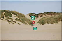 TQ9618 : Meeting point D, Camber Sands by N Chadwick