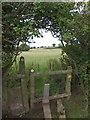 SY2593 : Stile on the East Devon Way  by David Smith