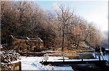 SK3155 : Snow Scene, Cromford Canal by Des Blenkinsopp