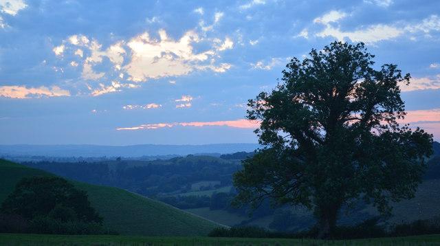 Spring Hill at sunset, near Poorton, Dorset