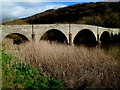 SO5819 : Kerne Bridge viewed from the Goodrich side by Jaggery