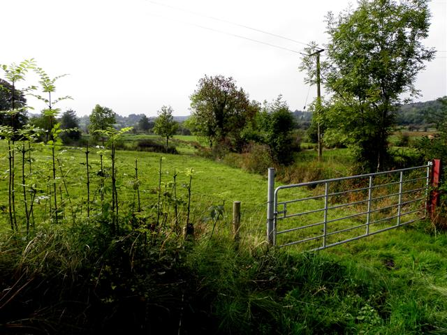Unshinagh Townland