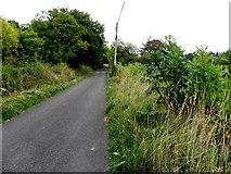 H0712 : Road at Kiltynashinnagh by Kenneth  Allen
