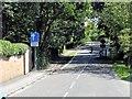TL3960 : Traffic Calming near Madingley by David Dixon