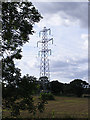 TG2505 : Electricity Pylon off the B1332 Bungay Road by Adrian Cable