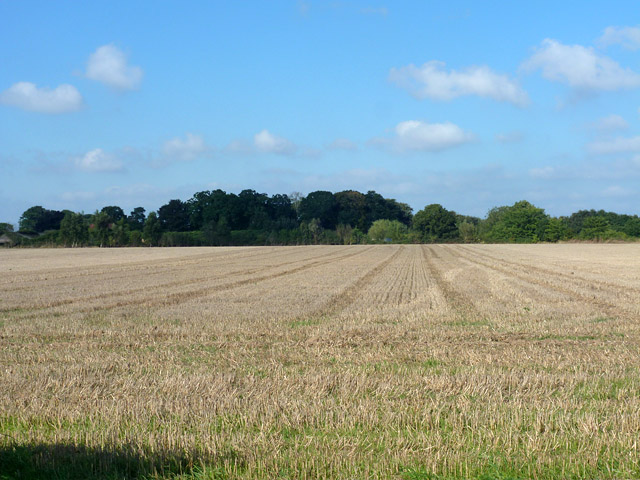 Field of stubble near Antingham