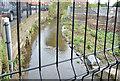 J3773 : Flood alleviation works, Orangefield Park, Belfast (1) by Albert Bridge