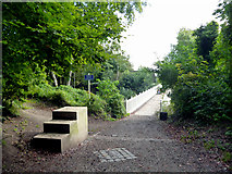 TQ2652 : Reigate Hill:  footbridge over the A217 by Dr Neil Clifton