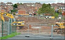 J3773 : Flood alleviation works, Orangefield Park, Belfast (3) by Albert Bridge