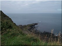 C9444 : The Giant's Causeway from the cliff-top path by Eric Jones