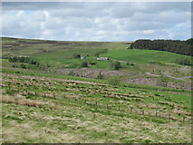 NY9398 : The valley of Keenshaw Burn near Headshope by Mike Quinn
